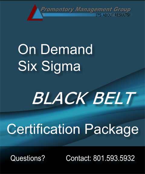 Black Belt Certification Complete Package